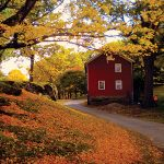 Seamon Park - Ulster County
